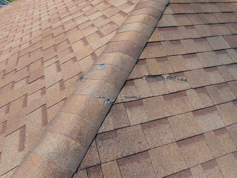 Roofing and Attic - Sugarland Home Inspection