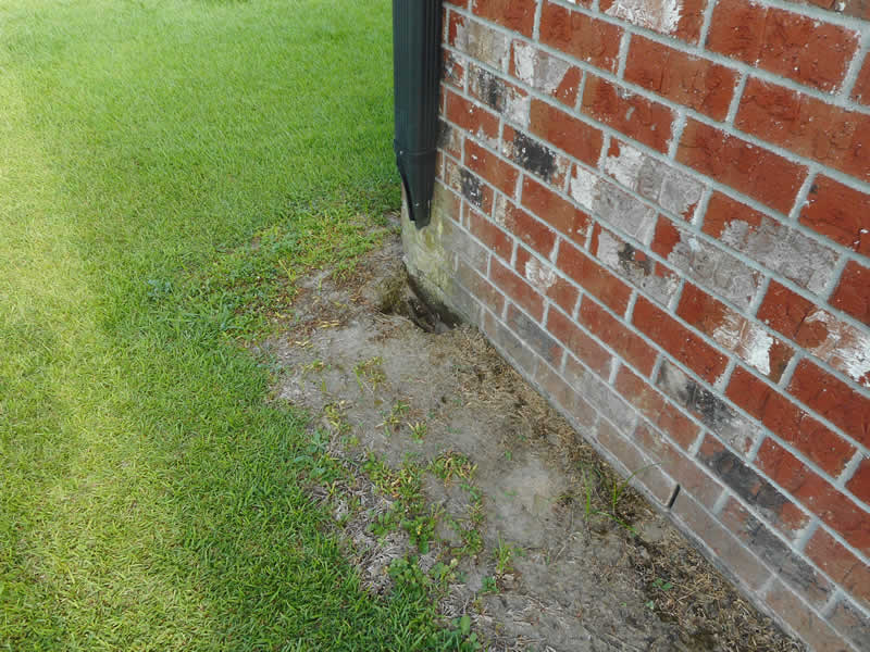 Grounds - Sugarland Home Inspection