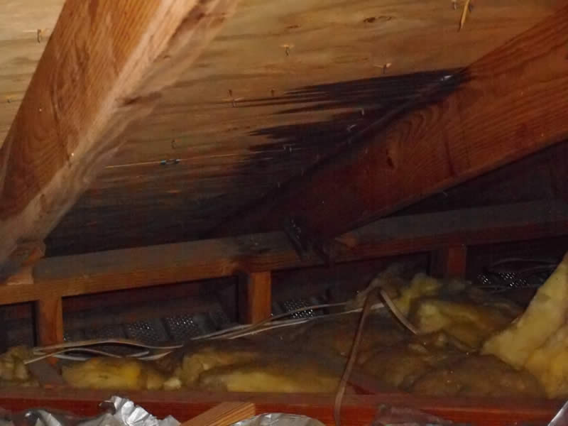 Structure - Sugarland Home Inspection